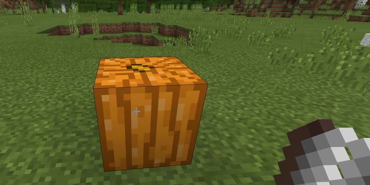 Minecraft Abóbora